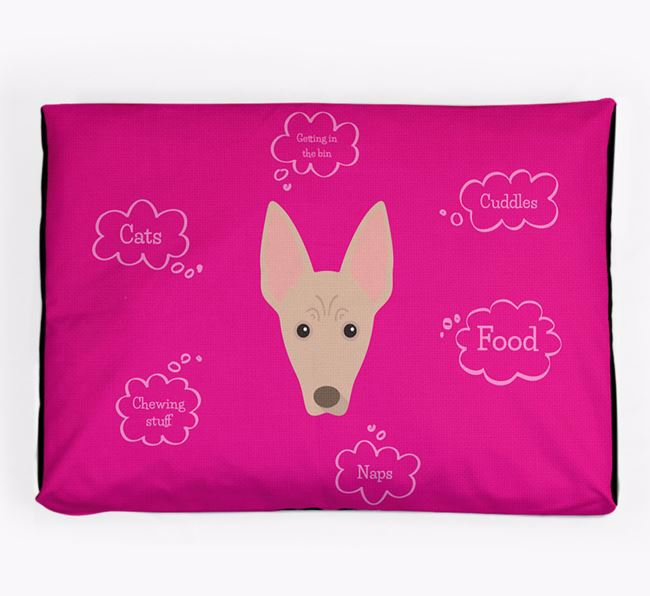 Personalised 'Sweet Dreams' Dog Bed for your American Hairless Terrier