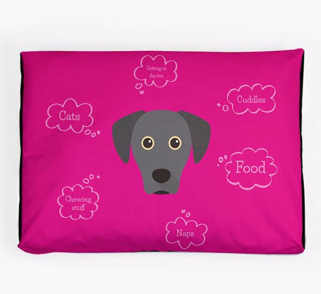 Personalised 'Sweet Dreams' Dog Bed for your Blue Lacy