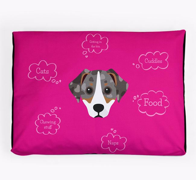 Personalised 'Sweet Dreams' Dog Bed for your Jackshund