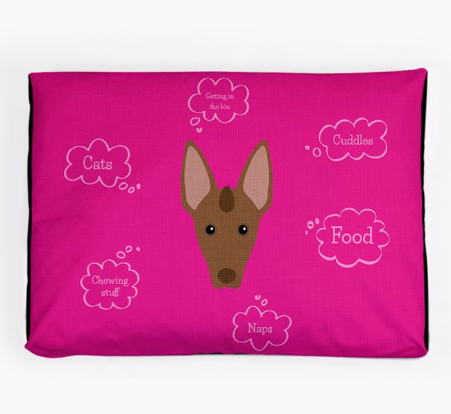 Personalised 'Sweet Dreams' Dog Bed for your Mexican Hairless