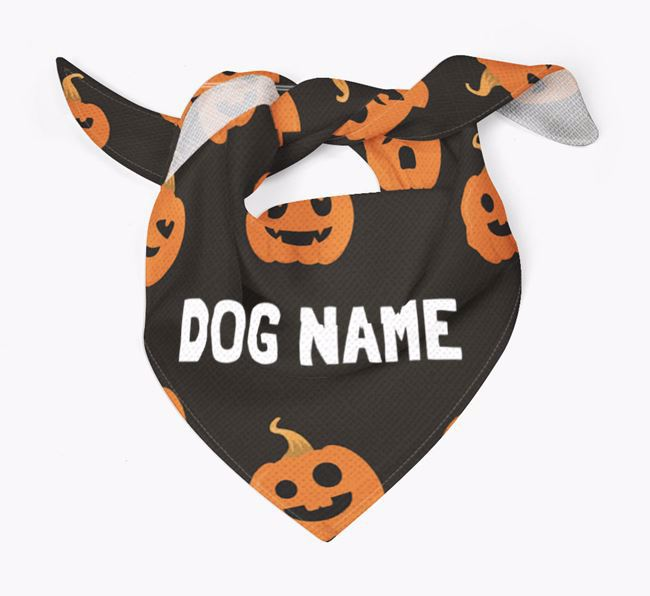 Personalized 'Pumpkin' Bandana for your Pug