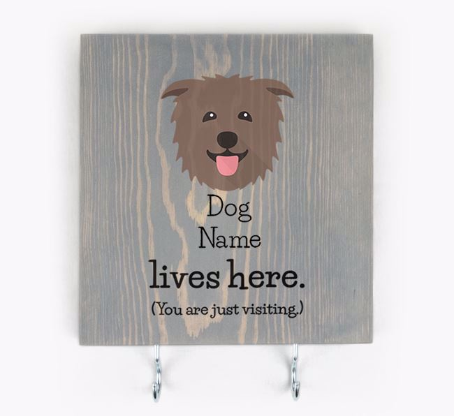 Personalised Wooden Sign 'Your Dog Lives Here' with Glen Of Imaal Terrier Icon