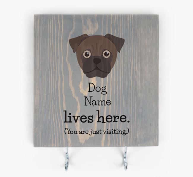 Personalised Wooden Sign 'Your Dog Lives Here' with Jug Icon