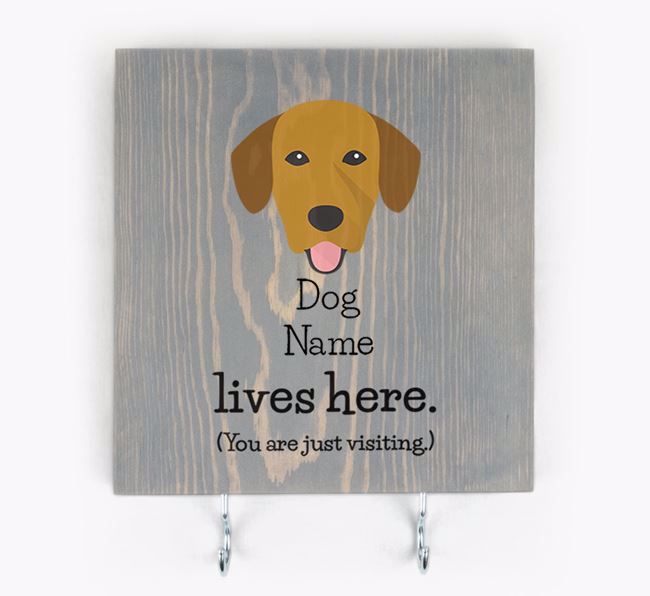 Personalised Wooden Sign 'Your Dog Lives Here' with Springador Icon