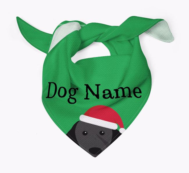 Personalised Christmas Brittany Icon 'Peeking' Bandana