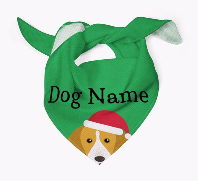Personalised Christmas English Coonhound Icon 'Peeking' Bandana