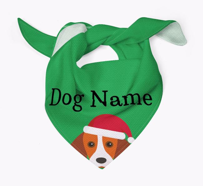 Personalised Christmas Kooikerhondje Icon 'Peeking' Bandana