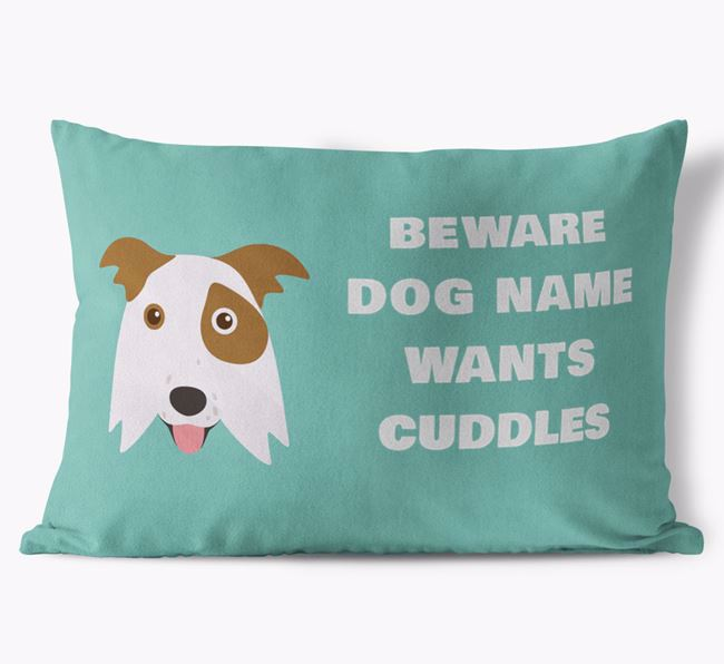 'Beware Of Cuddles' Soft Touch Cushion with Border Collie Icon