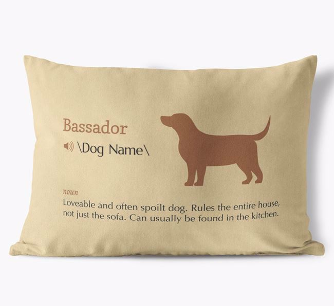 Personalised Bassador Definition Faux Suede Cushion