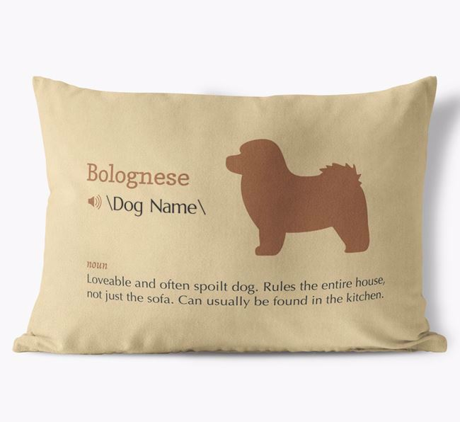 Personalised Bolognese Definition Faux Suede Cushion