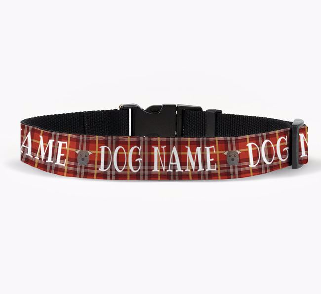 Personalised Fabric Collar with Tartan Pattern and American Pit Bull Terrier Icon for Your Dog