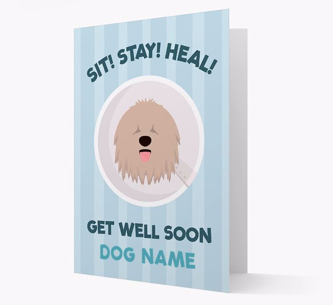 Personalised 'Sit! Stay! Heal! Get well soon Your Dog' Card