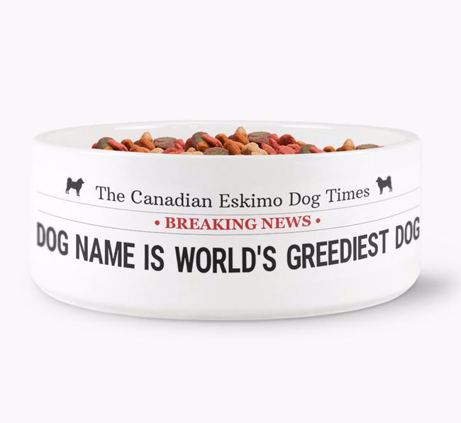 'Your Dog Named Top Dog' Dog Bowl