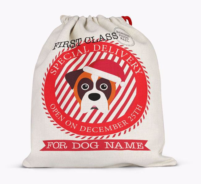 'Special Delivery' - Personalized Santa Sack for your Dog