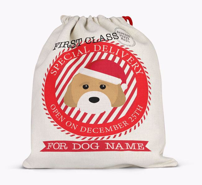 Santa Sack 'Special Delivery' - Personalised for Your Cavachon