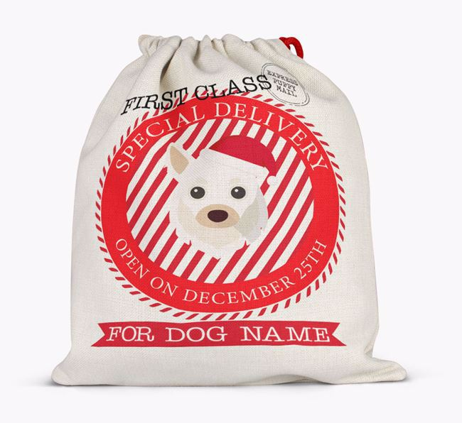 'Special Delivery' - Personalized Santa Sack for your Chihuahua