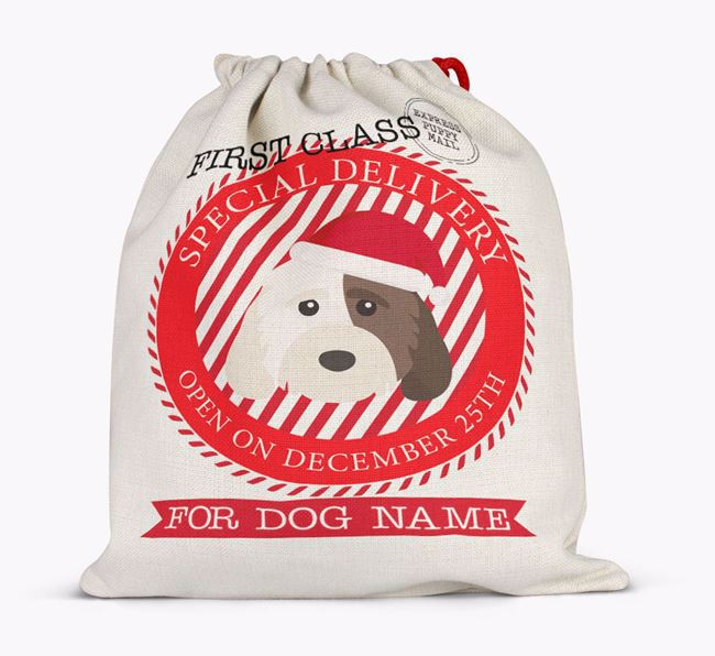 'Special Delivery' - Personalized Santa Sack for your Cockapoo