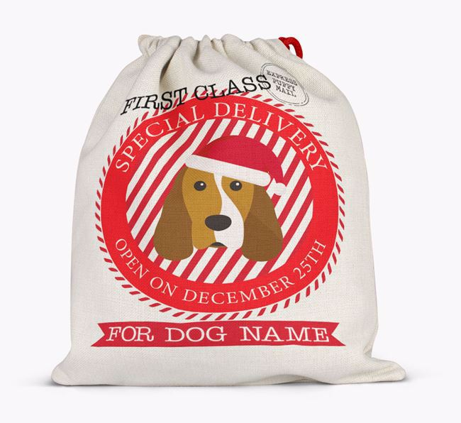 Santa Sack 'Special Delivery' - Personalised for Your Cocker Spaniel