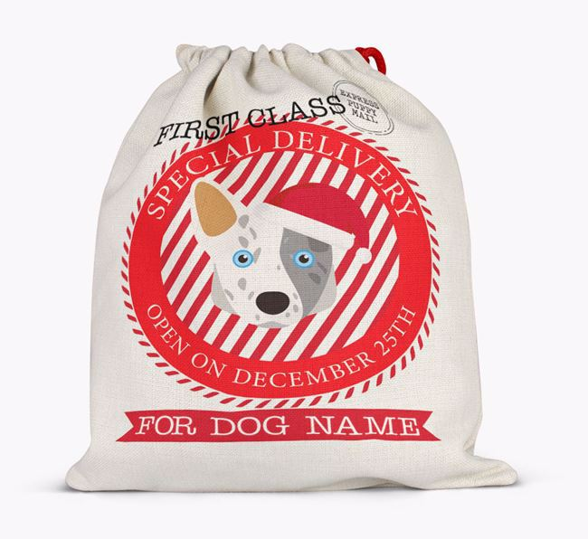 'Special Delivery' - Personalized Santa Sack for your Corgi