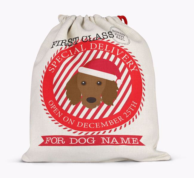 'Special Delivery' - Personalized Santa Sack for your Dachshund