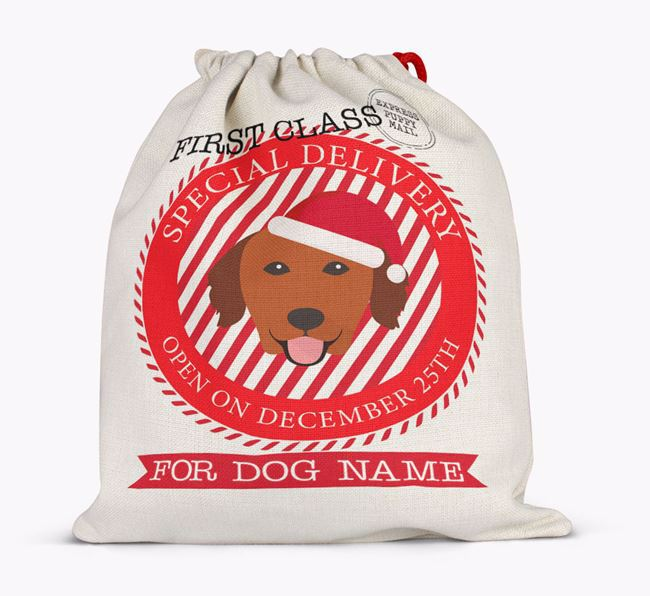 'Special Delivery' - Personalized Santa Sack for your Golden Retriever