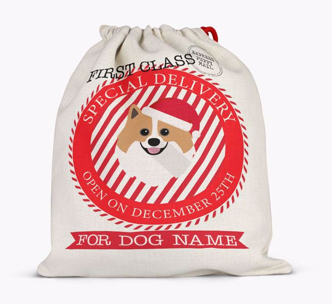 'Special Delivery' - Personalized Santa Sack for your Pomeranian