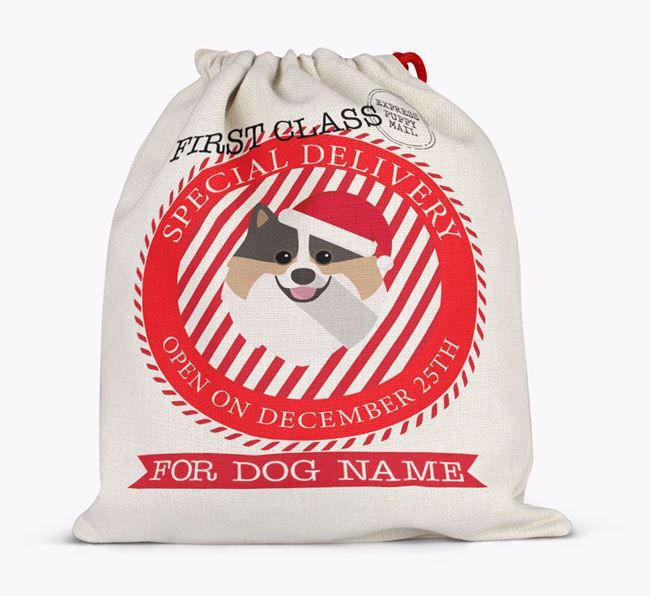 Santa Sack 'Special Delivery' - Personalised for Your Pomeranian