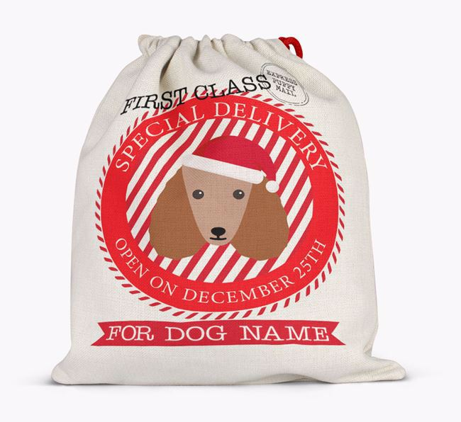 Santa Sack 'Special Delivery' - Personalised for Your Poodle