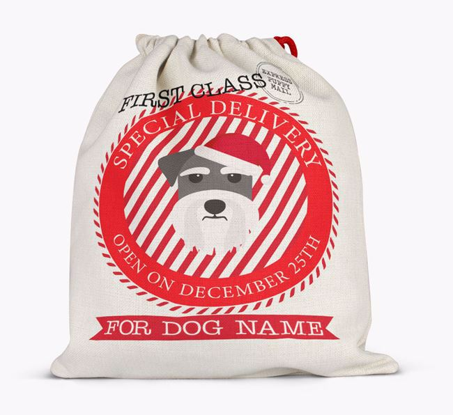 'Special Delivery' - Personalized Santa Sack for your Schnauzer
