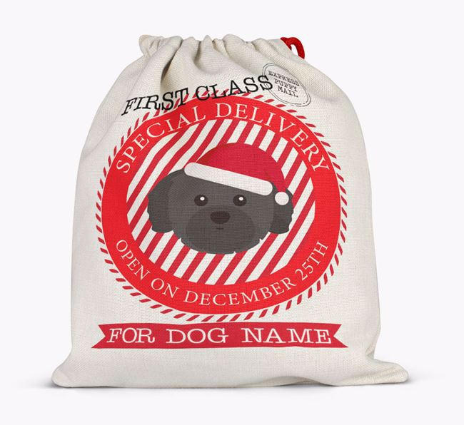 'Special Delivery' - Personalized Santa Sack for your Shih Tzu