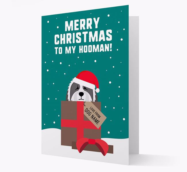 'Merry Christmas to my Hooman' - Personalized Bearded Collie Christmas Card
