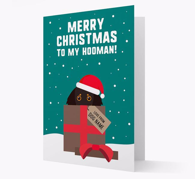 'Merry Christmas to my Hooman' - Personalized Dachshund Christmas Card