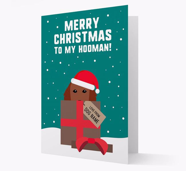 'Merry Christmas to my Hooman' - Personalized Flat-Coated Retriever Christmas Card