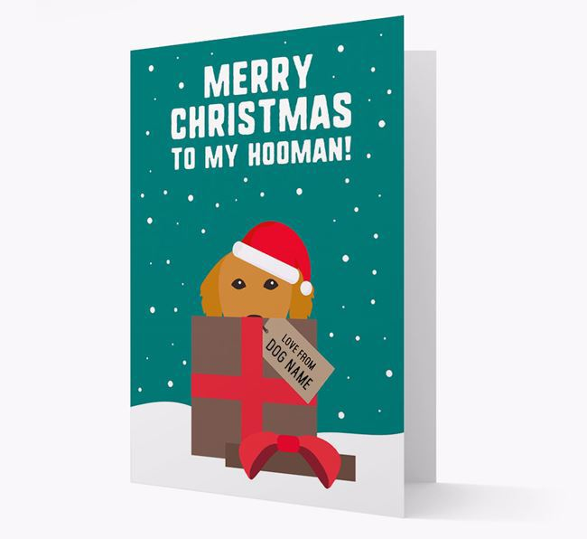 'Merry Christmas to my Hooman' - Personalized Golden Retriever Christmas Card