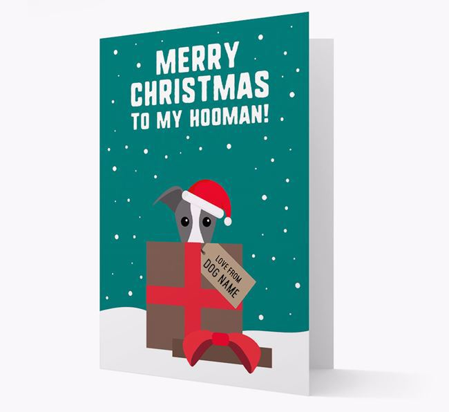 'Merry Christmas to my Hooman' - Personalized Whippet Christmas Card