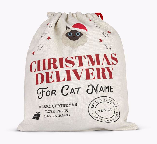 'Christmas Delivery' - Personalised Cat Santa Sack