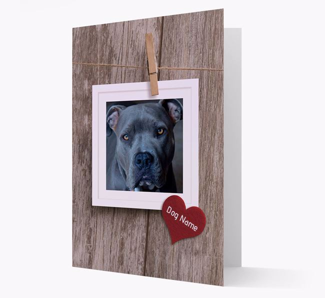 'Pegged on a Line' - American Pit Bull Terrier Photo Upload Card
