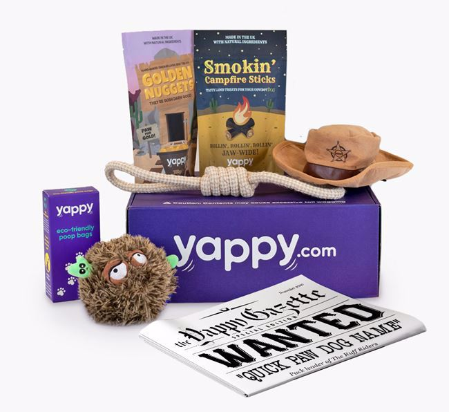 """Yappy Box """"Wagnificent Seven'"""