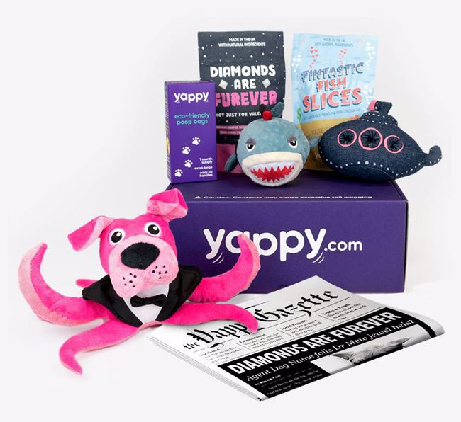 Yappy Box 'Fur Your Eyes' - Personalised with your Pug