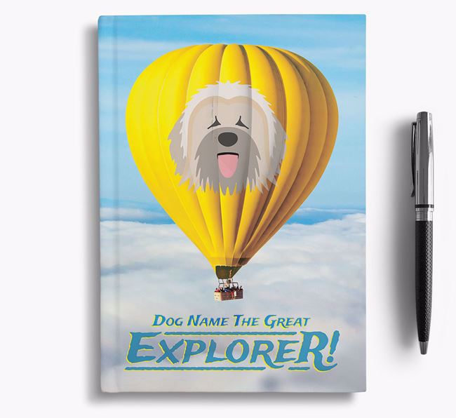 'Hot Air Balloon' - Personalized Briard Notebook
