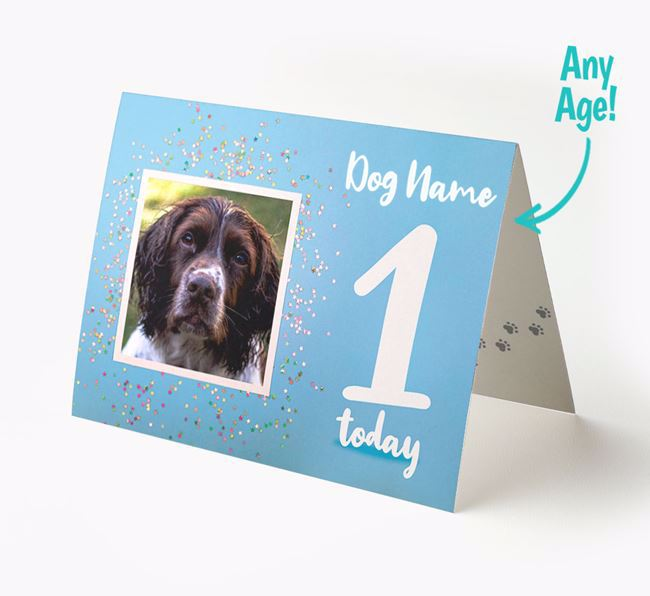 Birthday Card featuring a Photo of your Springer Spaniel
