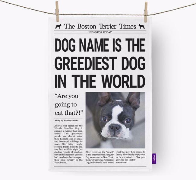 The Boston Terrier Times 'Greediest Dog In The World' Personalised Tea Towel