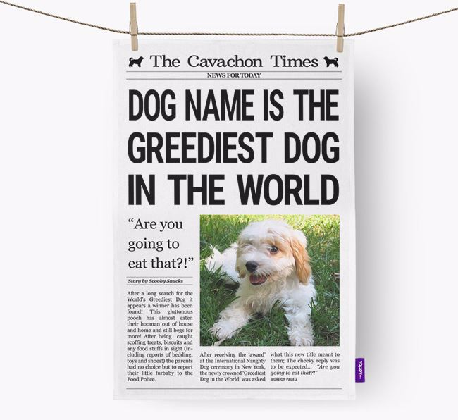 The Cavachon Times 'Greediest Dog In The World' Personalised Tea Towel
