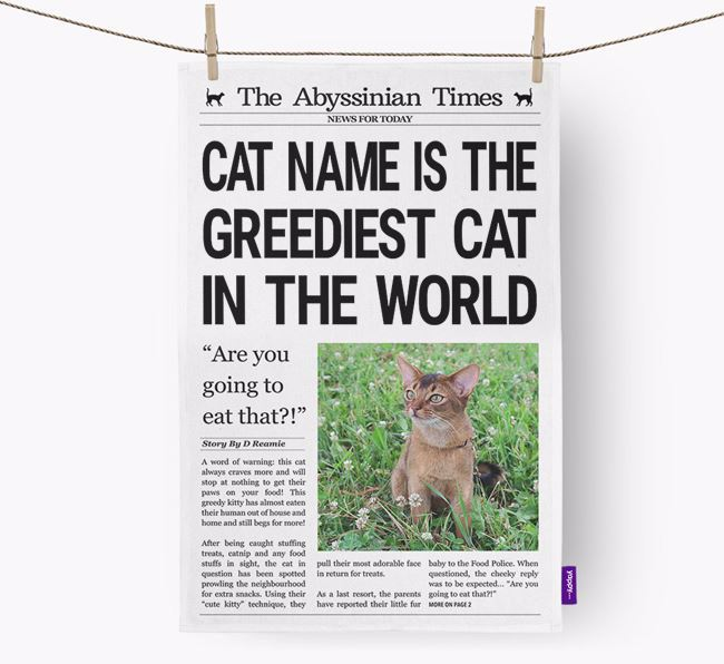 The Cat Times 'Greediest Cat In The World' Personalised Dish Towel