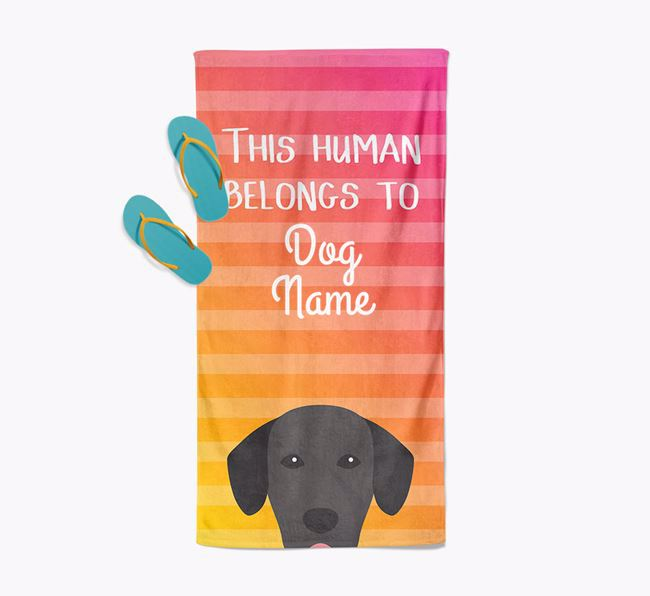 Personalised Pool Towel 'This Human Belongs To Your Dog' with Springador Icon