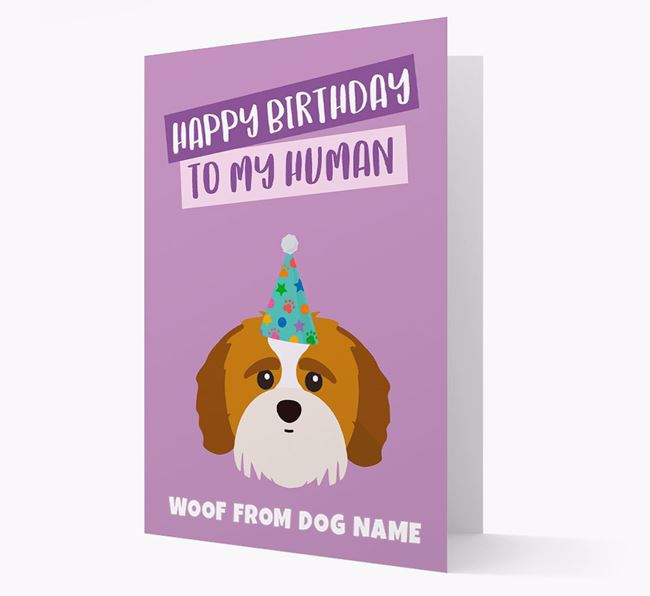 Personalized 'Happy Birthday To My Human' Card with Shih-poo Icon