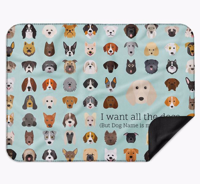Personalised Luxury Dog Blanket 'All the dogs...'