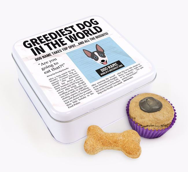 Personalised 'Greediest Dog' Newspaper Print Square Tin for your Australian Working Kelpie