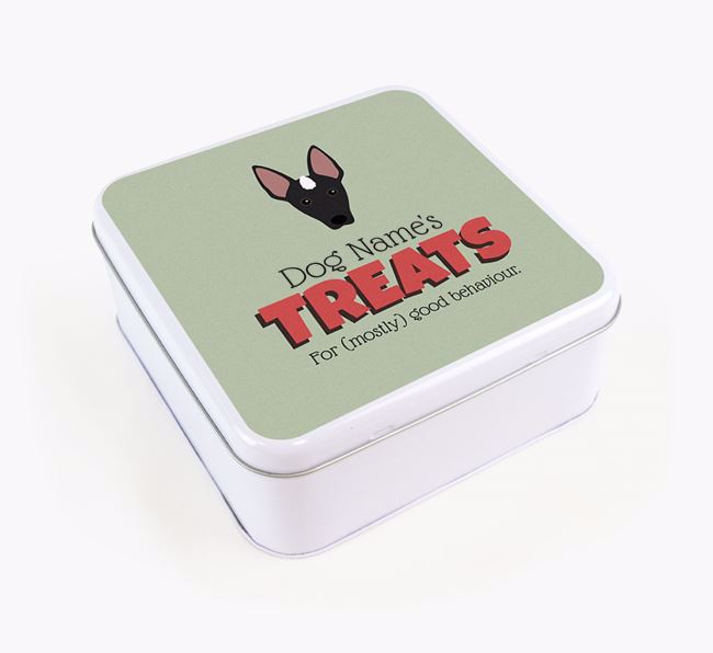 Personalised Retro Design Square Tin for your Mexican Hairless