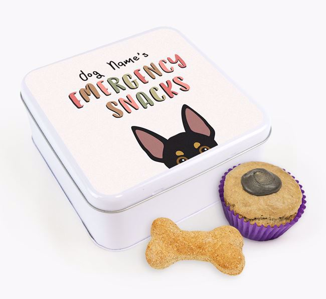 'Best Treats in Town' Square Tin for your Australian Working Kelpie